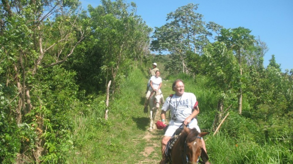 Jungle Horseback Riding