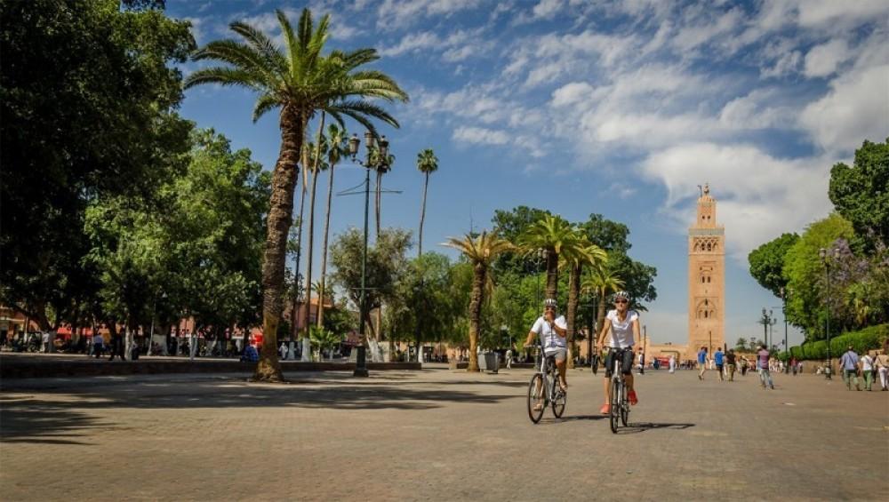 Magical Marrakech City Tour