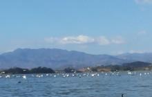 Cerron Grande Reservior and Bird Islands Boating tour