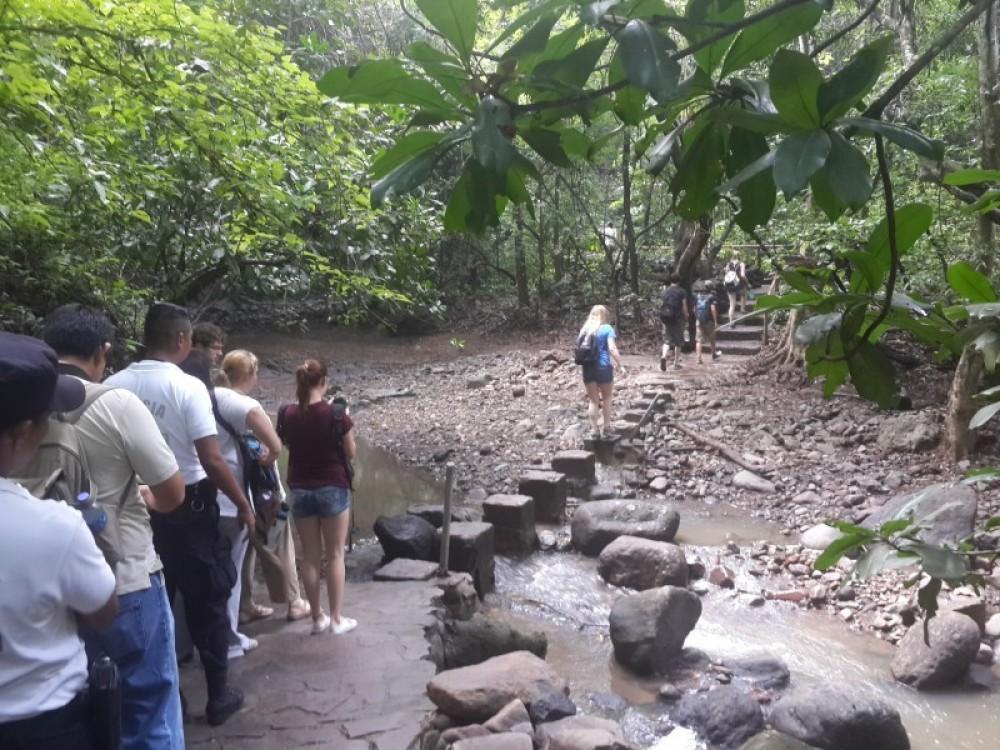 Cinquera Eco Forest