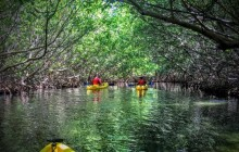 Kayaking Puerto Rico Adventures