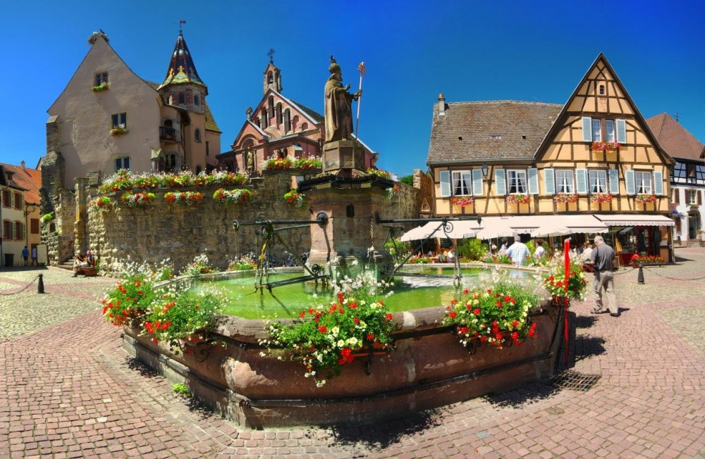 Alsace Full Day Shared Wine Tour from Strasbourg