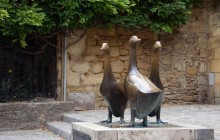 Ophorus Excursions & Tours