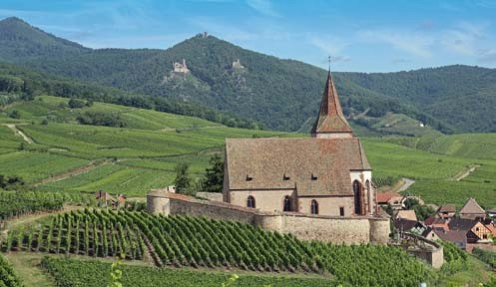 Alsace Villages Half Day Shared Tour from Colmar