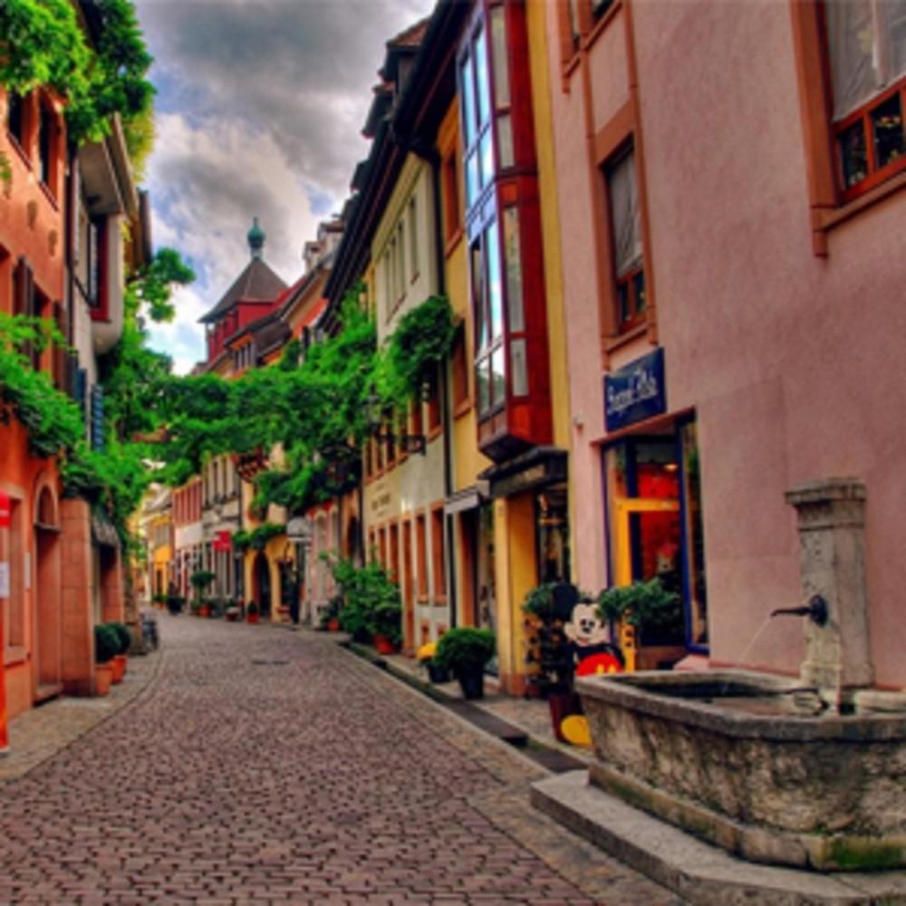 Freiburg Town Market Half Day Shared Tour from Colmar