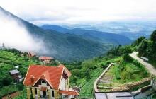 Tam Dao Day Trip