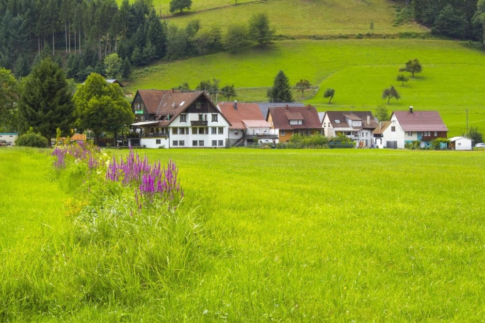 Freiburg & The Black Forest Private Tour