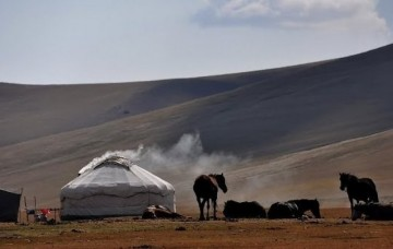A picture of Camel riding Safaris in the Steppes of Central Asia