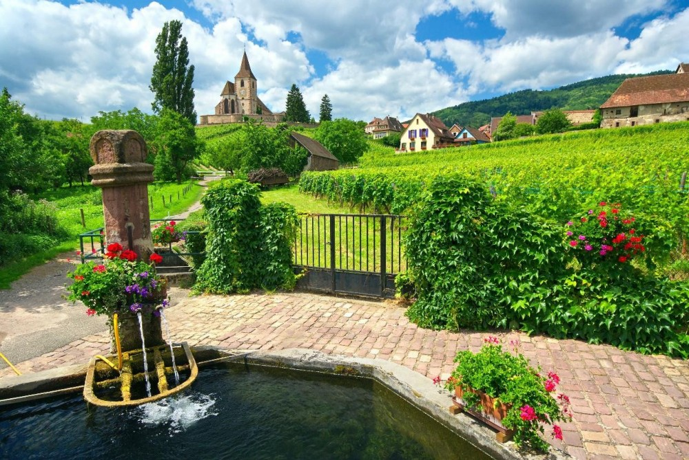 Customizable Private Wine + Village Tour from Strasbourg
