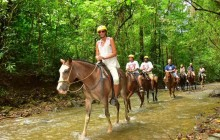 Horseback Riding Tour With Niagara