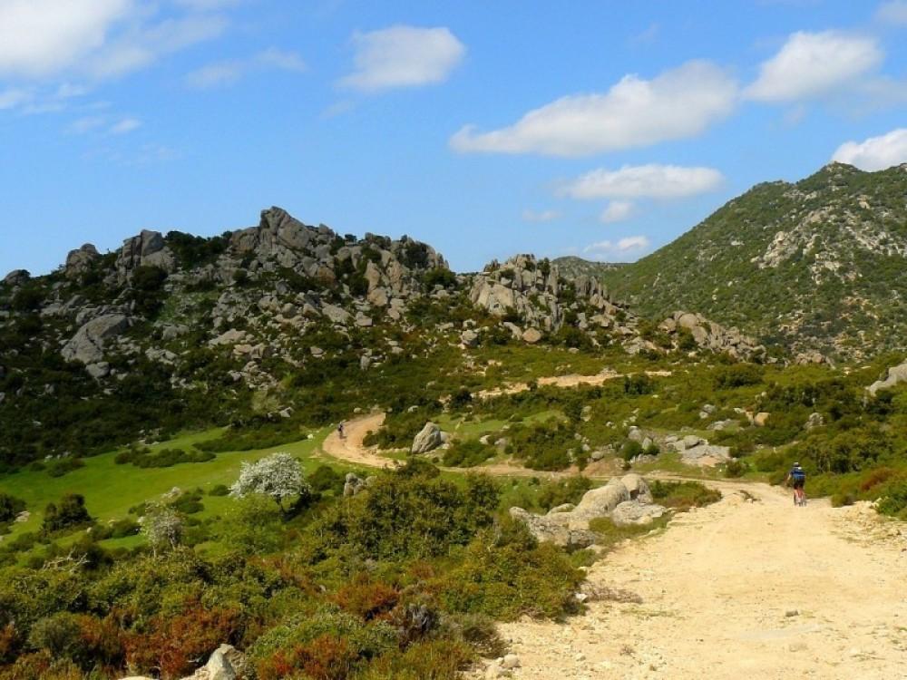 Halkidiki Mediterranean Rides Bike Tour, Greece