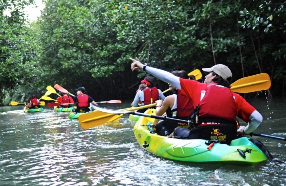 Kayaking Puerto Rico Adventures