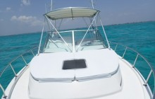 Power Boat Tour Half Day Charter