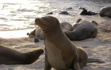 Middle of the world and Galapagos 10 Days/ 9 Nights
