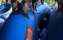 Amigos Del Rio & ADR Adventure Park