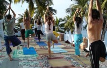 Exotic Yoga & Wellness Retreat to South India