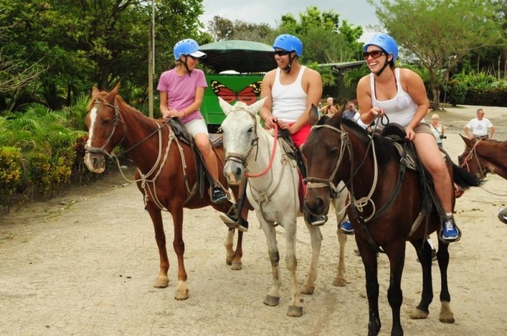 Buena Vista Combo Tour