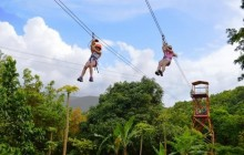 Rainforest Zipline Experience