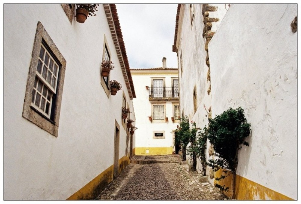 Obidos Medieval Village & Lagoon Tour