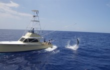 3/4 Day Exclusive Fishing Charter (6 Hours)