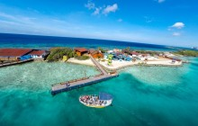 De Palm Island by Bus - Full Day