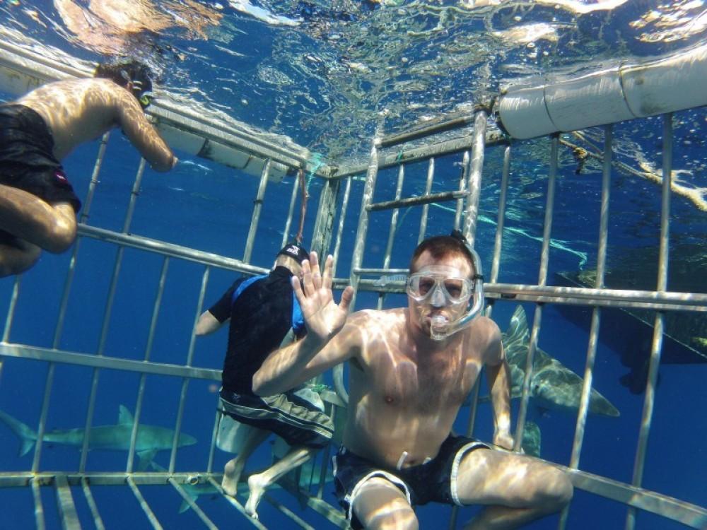 Shark Cage Snorkel