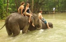 White Elephant Adventures