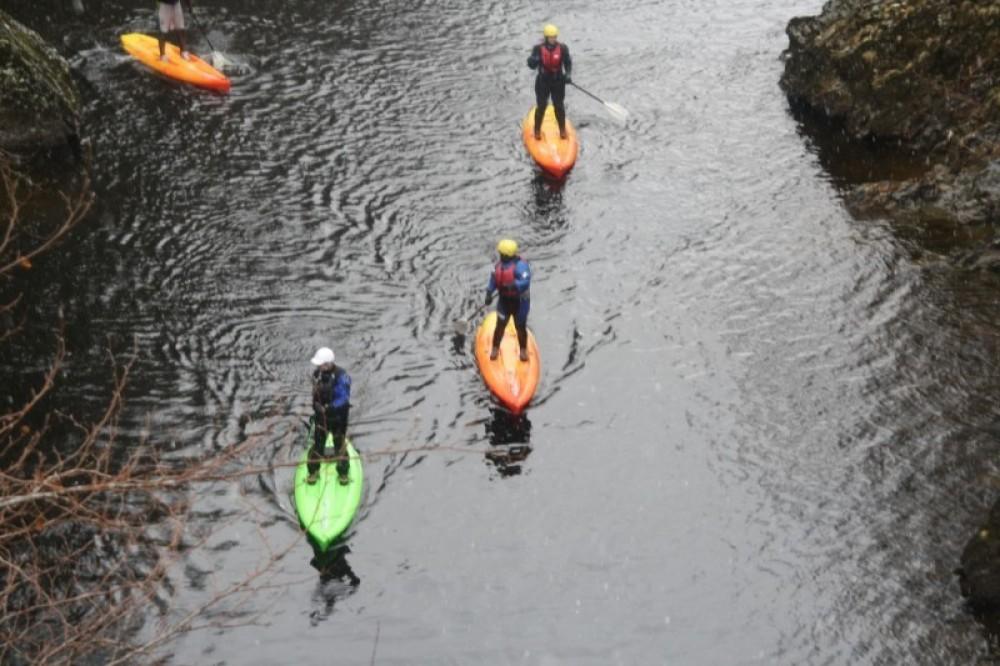 Standup Paddle Board (SUPs)
