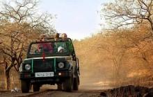 Private Safari To Raneh Fall Canyon From Khajuraho