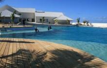Dolphin Swim Adventure: Grand Cayman (West)