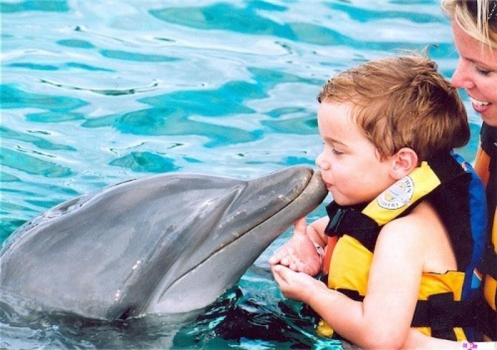 Dolphin Encounter: Cozumel