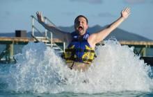 Dolphin Royal Swim: Anguilla - St. Martin