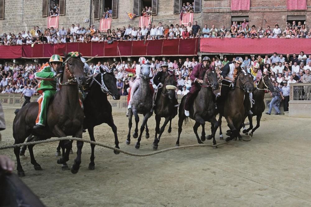 Siena's Palio Horse Race