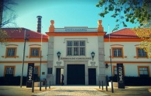 Bairrada & Vista Alegre Gastronomy & Wine Meets Art Tour