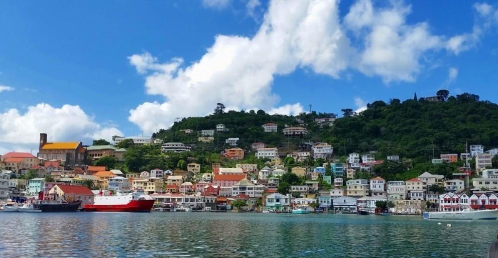 Grenada Seafaris