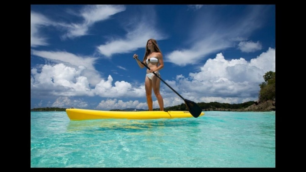 Stand Up Paddle Tour in the Mangrove Lagoon