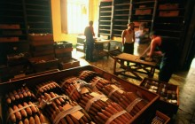 Private Cuba Cigar Tour 4 Nights