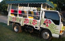 Eco - Safari Tour (Driven Tour)