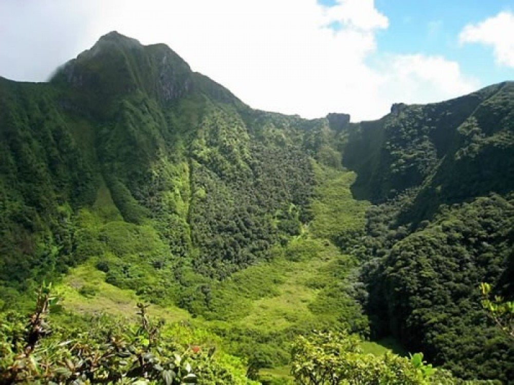 Mount Liamuiga Volcano Hike