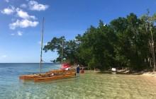 Half Day Sailing Trip