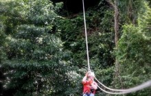 Rainforest Canopy Tour & Beach