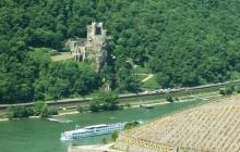 Half Day on the Rhine