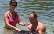 Dolphin Cove - Lucea