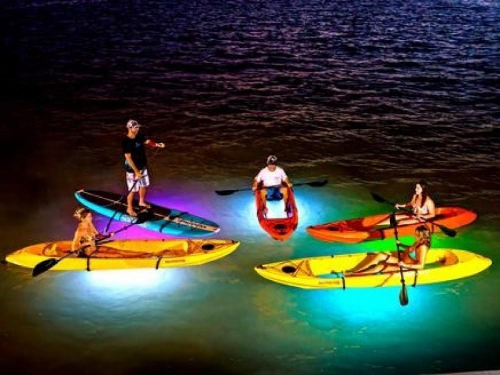Evening Cruise Kayak Tour (Double Kayak)