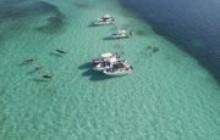 Anse-à-Galets Boat Excursions