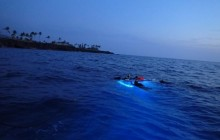 Sunset Cruise & Manta Ray Night Swim