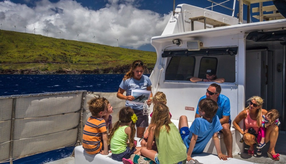 Ultimate Whale Watch from Ma'alaea