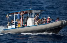 Small Group Raft Whale Watch from Lahaina