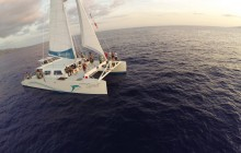 Deluxe Whale Watch Sail from Lahaina