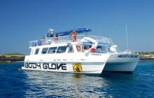 Deluxe Snorkel & Dolphin Watch